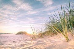 Sandy-Strand auf Sonnenuntergang Stockbilder