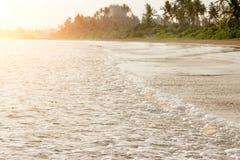 Sandy-Strand, grüner Dschungel, Palmen, Fischerboot auf dem Sand, schwimmende Leute Stockbilder