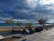 Sandy-Strand mit kleinen Bäumen und bewölktem Himmel stockfoto