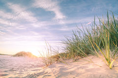 Sandy-Strand onn Sonnenuntergang Lizenzfreie Stockfotografie