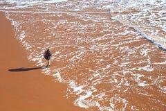 Sandy-Strand in Sidmouth, Devon Stockbild