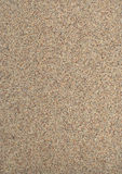 Sandy stucco texture Stock Images