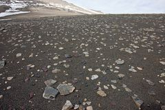 Sandy Surface Covered by Little Stones Stock Photos