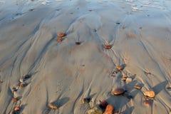 sandy tbackground plaży Zdjęcie Stock