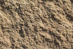 Sandy texture close up. Sand illuminated by sun Stock Photos
