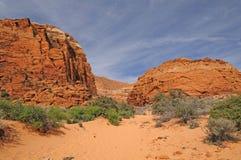 Sandy Trail in eine Wüsten-Schlucht Stockbild