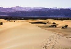 Sandy Trails Photo libre de droits