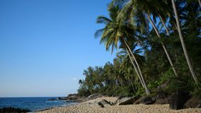 Sandy tropical beach over sea and blue summer sky background. Sandy tropical beach with rocks and palm trees over beautiful sea and blue summer sky background stock video footage