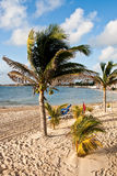 Sandy Tropical Beach with Palm Trees Stock Photos