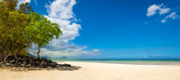Sandy tropical beach. Panorama. Royalty Free Stock Image
