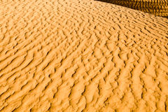 Sandy-Wüste Lizenzfreie Stockfotografie