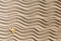 Sandy wavees background with starfish Royalty Free Stock Photography
