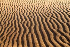 Sandy waves Royalty Free Stock Images
