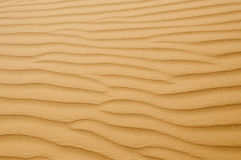 Sandy waves. Are poured in solar beams Stock Photography