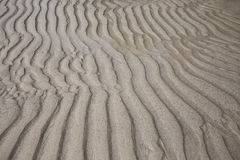 Sandy waves texture Royalty Free Stock Image