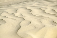 Sandy waves texture Stock Images