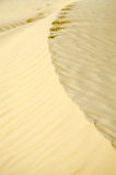 Sandy waves texture. Close up of golden sand waves created by wind Stock Image
