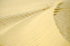 Sandy waves texture. Close up of golden sand waves created by wind Stock Photos