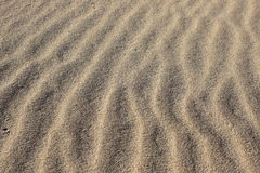 Sandy waves - Vertical sand texture build and created by the wind and ocean Royalty Free Stock Photo