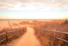 Sandy-Weg f?hrt, um an Cape May Wiesen bei Sonnenaufgang auf einem Vorfr?hlingsmorgen auf den Strand zu setzen lizenzfreie stockfotografie