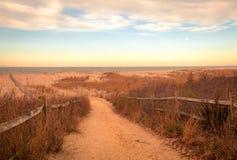 Sandy-Weg f?hrt, um an Cape May Wiesen bei Sonnenaufgang auf einem Vorfr?hlingsmorgen auf den Strand zu setzen stockbilder