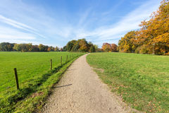 Sandy-Weg zwischen grünen Wiesen mit Herbstfarben Stockfotografie