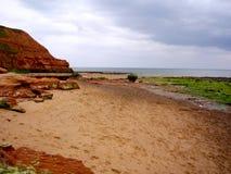 Sandy zatoka - Devon Zdjęcia Stock