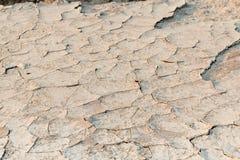 Sandy ziemia Obrazy Royalty Free