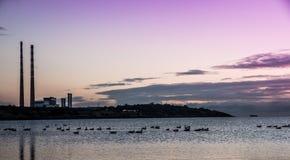 Sandymount pasemka wschód słońca Zdjęcie Stock