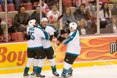 Sanen Jose Sharks Celebrate arkivbilder