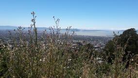Sanfrancisco landscape Stock Photo