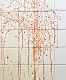 Sang avec des traînées sur la salle de bains Photographie stock