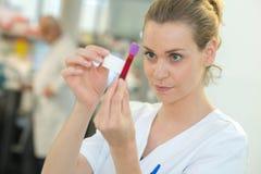 Sang de étiquetage d'infirmière dans de tube électronique photos stock