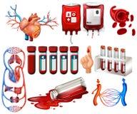 Sang humain et organes illustration de vecteur