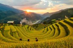 Sang Nhu häst-sko och terrasserad risfält av folket för H-`-Mong person som tillhör en etnisk minoritet royaltyfri bild