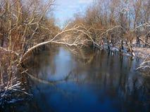 Sangamon flodPiatt län Illinois Arkivbilder