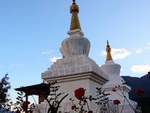 Sangchhen paisible Dorji Lhuendrup Lhakhang, Bhutan pendant le crépuscule photo libre de droits