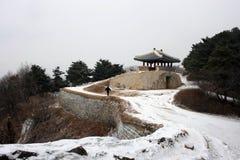 Sangdangsanseongvesting SEOEL - JULI 30: Het veranderen van wachten van de vriend van de koning Stock Foto