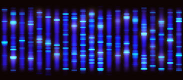 Sanger Sequencing Background Royalty Free Stock Photos