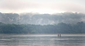 Sangha River . Sangha River. Morning fog on the African river Sangha Stock Photos