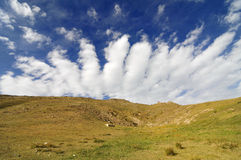 Sangke grasslands Stock Photography