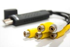 Sangle ou câbles de rca dans la vue étroite Image stock