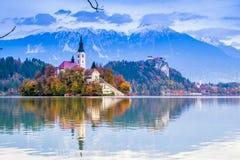 Sangrado com lago, Eslovênia, Europa Fotografia de Stock Royalty Free