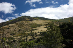 Sangre De克里斯多Mountains领域 库存照片