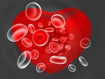 Sangre dentro de un corazón Imagen de archivo libre de regalías