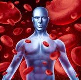 Sangre humana Fotos de archivo libres de regalías