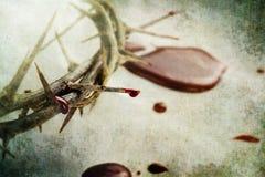 Sangre y espinas fotos de archivo