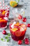 Sangria алкогольного напитка лета холодный с свежими фруктами и ягодами Стоковое Изображение RF
