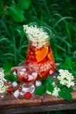 Sangria de fleur de sureau, de fraise et de vin rosé Images libres de droits