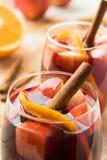 Sangria espanhola com vinho tinto e frutos Imagem de Stock Royalty Free